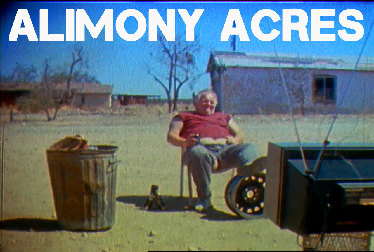 Alimony Acres – a viral for Guitar Center