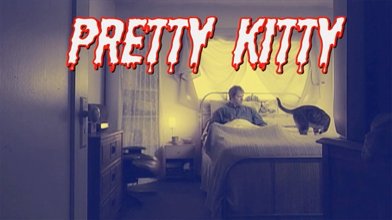 Pretty Kitty Trailer